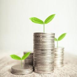 Minnesota Life Financial Stability